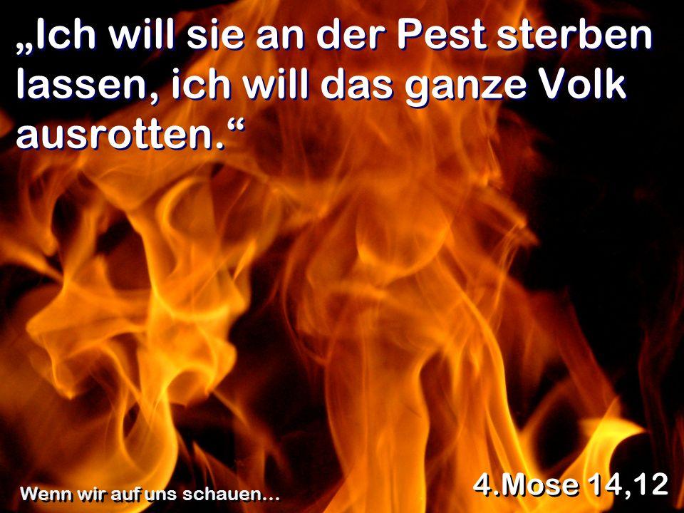 Ich will sie an der Pest sterben lassen, ich will das ganze Volk ausrotten. 4.Mose 14,12 Wenn wir auf uns schauen…
