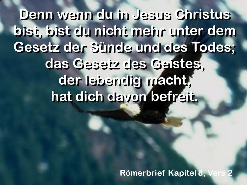 Denn wenn du in Jesus Christus bist, bist du nicht mehr unter dem Gesetz der Sünde und des Todes; das Gesetz des Geistes, der lebendig macht, hat dich