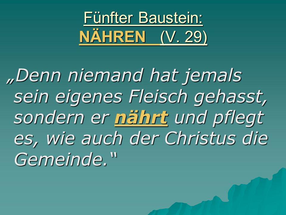 Fünfter Baustein: NÄHREN (V.
