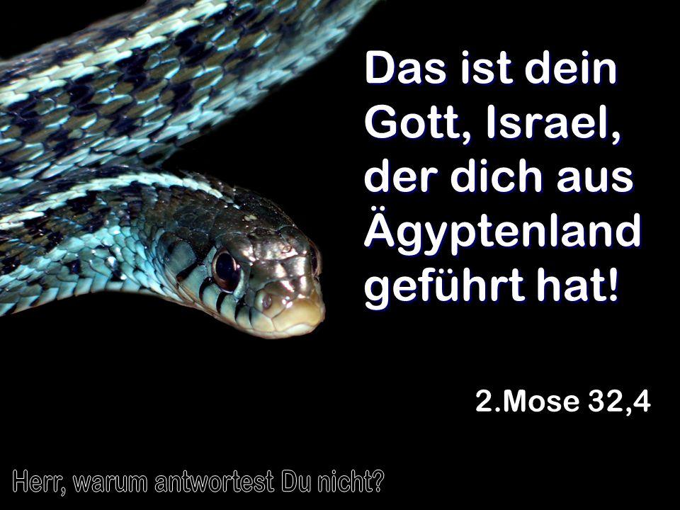 Das ist dein Gott, Israel, der dich aus Ägyptenland geführt hat! 2.Mose 32,4