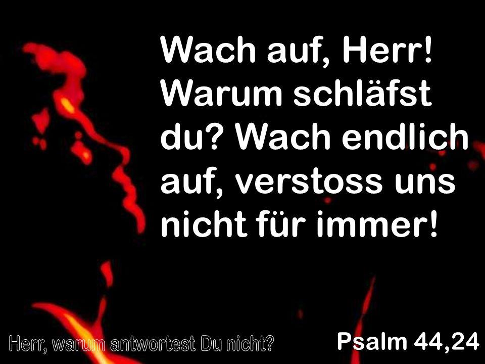 Wach auf, Herr! Warum schläfst du? Wach endlich auf, verstoss uns nicht für immer! Psalm 44,24