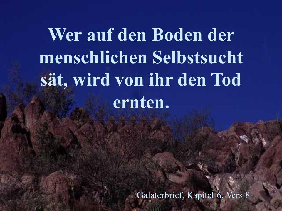 Galaterbrief, Kapitel 6, Vers 8 Wer auf den Boden der menschlichen Selbstsucht sät, wird von ihr den Tod ernten.