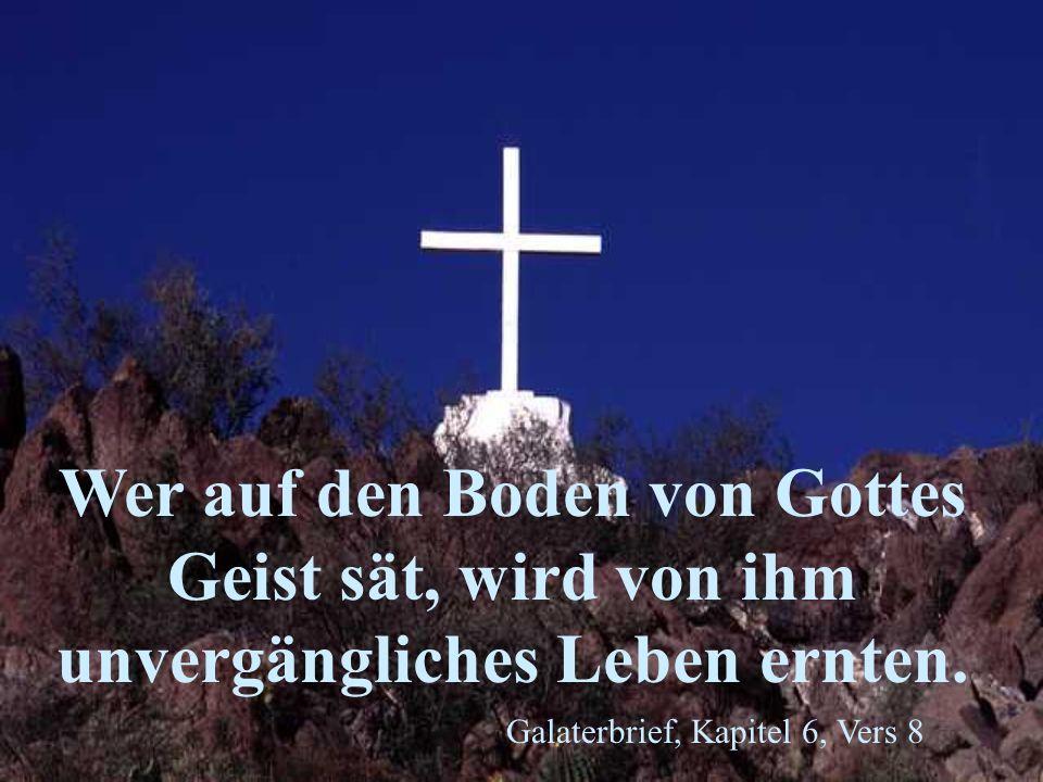 Wer auf den Boden von Gottes Geist sät, wird von ihm unvergängliches Leben ernten.