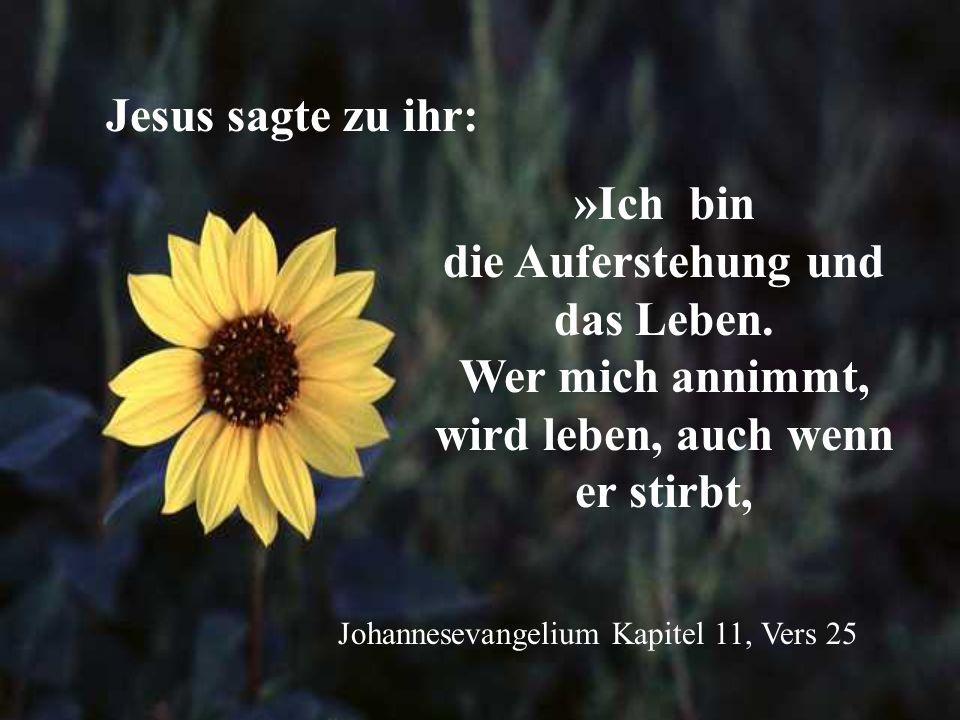 »Ich bin die Auferstehung und das Leben. Wer mich annimmt, wird leben, auch wenn er stirbt, Johannesevangelium Kapitel 11, Vers 25 Jesus sagte zu ihr: