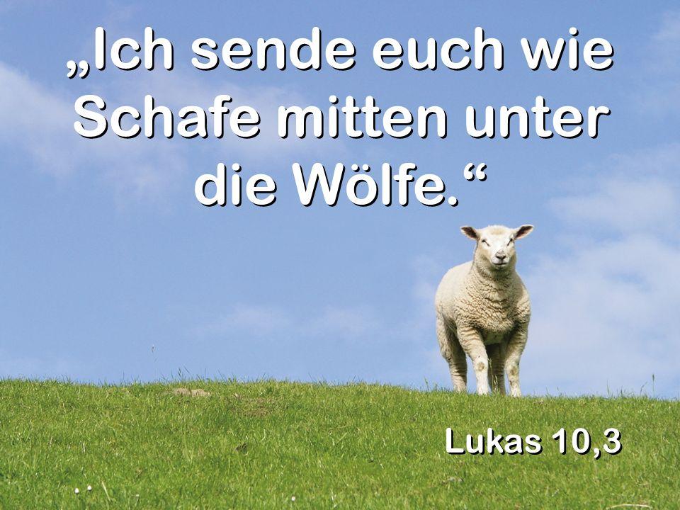 Lukas 10,3 Ich sende euch wie Schafe mitten unter die Wölfe.