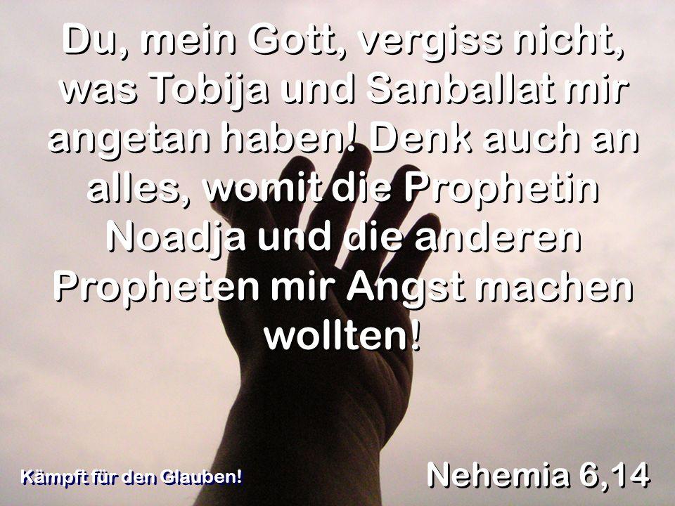Du, mein Gott, vergiss nicht, was Tobija und Sanballat mir angetan haben! Denk auch an alles, womit die Prophetin Noadja und die anderen Propheten mir