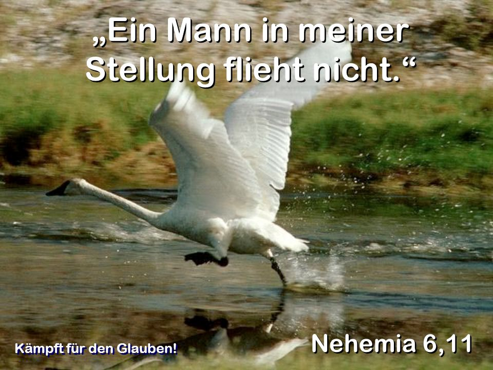 Ein Mann in meiner Stellung flieht nicht. Nehemia 6,11 Kämpft für den Glauben!