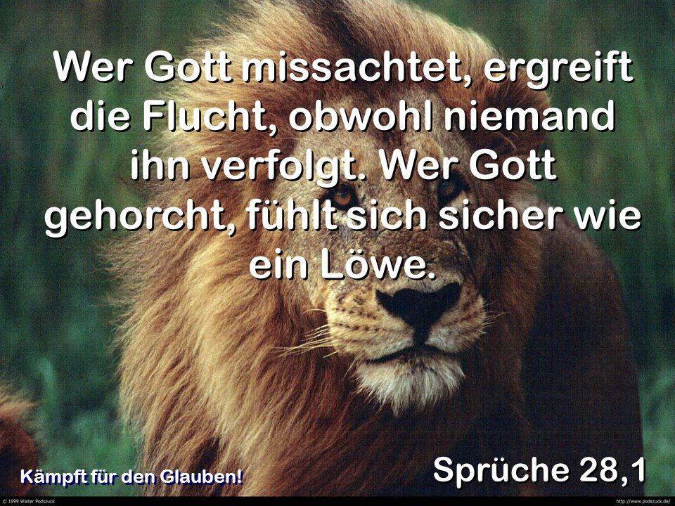 Wer Gott missachtet, ergreift die Flucht, obwohl niemand ihn verfolgt. Wer Gott gehorcht, fühlt sich sicher wie ein Löwe. Sprüche 28,1 Kämpft für den