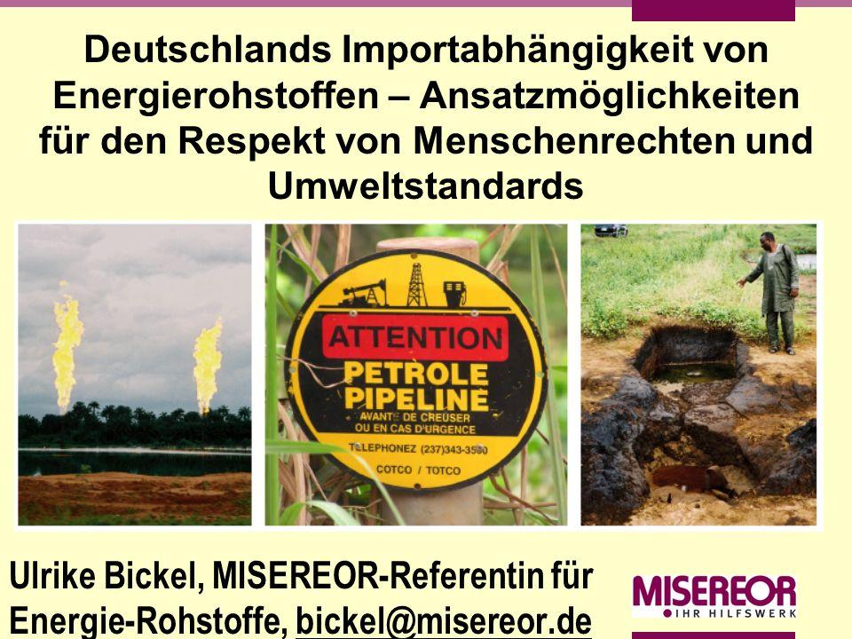 Deutschlands Importabhängigkeit von Energierohstoffen – Ansatzmöglichkeiten für den Respekt von Menschenrechten und Umweltstandards Ulrike Bickel, MIS