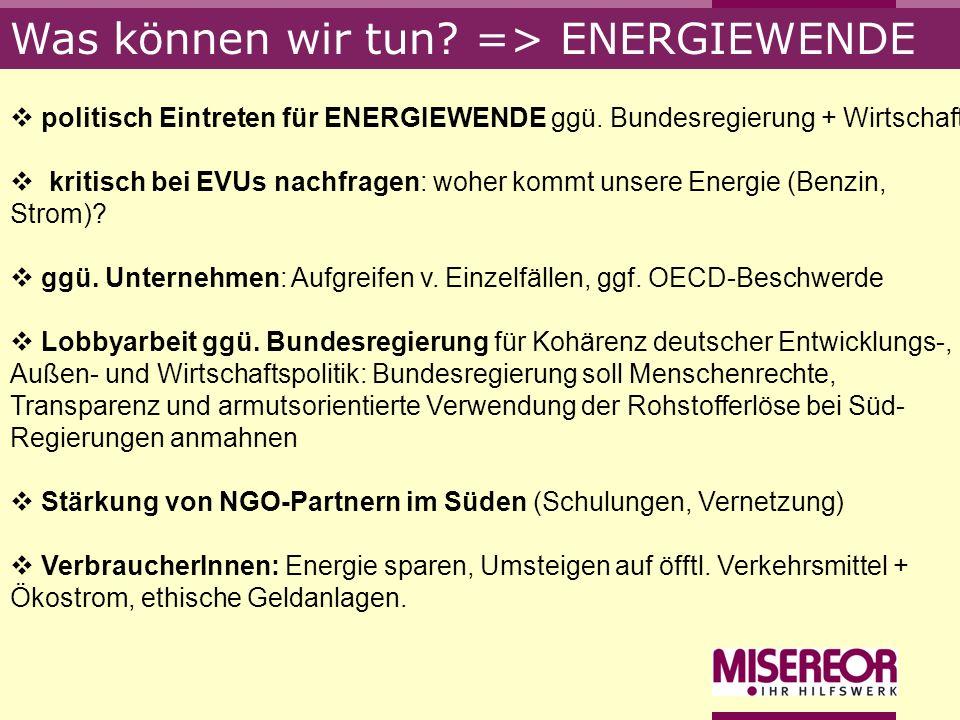 Was können wir tun? => ENERGIEWENDE politisch Eintreten für ENERGIEWENDE ggü. Bundesregierung + Wirtschaft kritisch bei EVUs nachfragen: woher kommt u