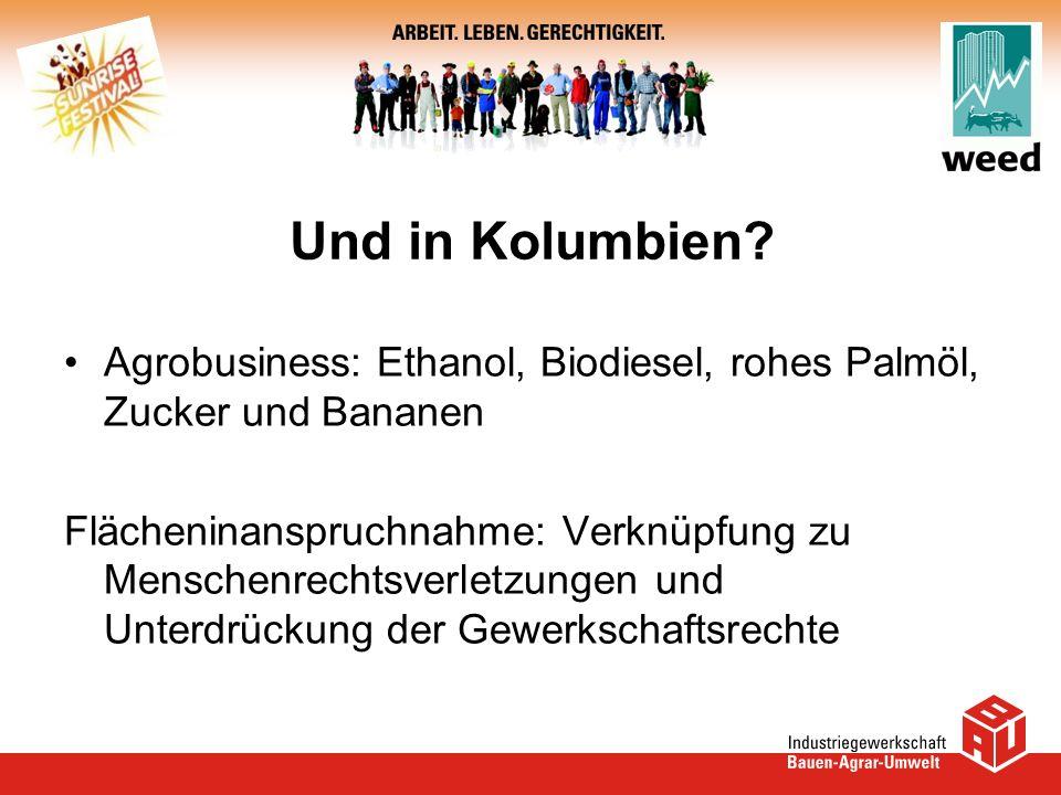 Und in Kolumbien? Agrobusiness: Ethanol, Biodiesel, rohes Palmöl, Zucker und Bananen Flächeninanspruchnahme: Verknüpfung zu Menschenrechtsverletzungen