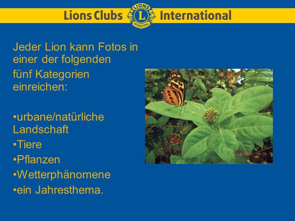 Jeder Lion kann Fotos in einer der folgenden fünf Kategorien einreichen: urbane/natürliche Landschaft Tiere Pflanzen Wetterphänomene ein Jahresthema.