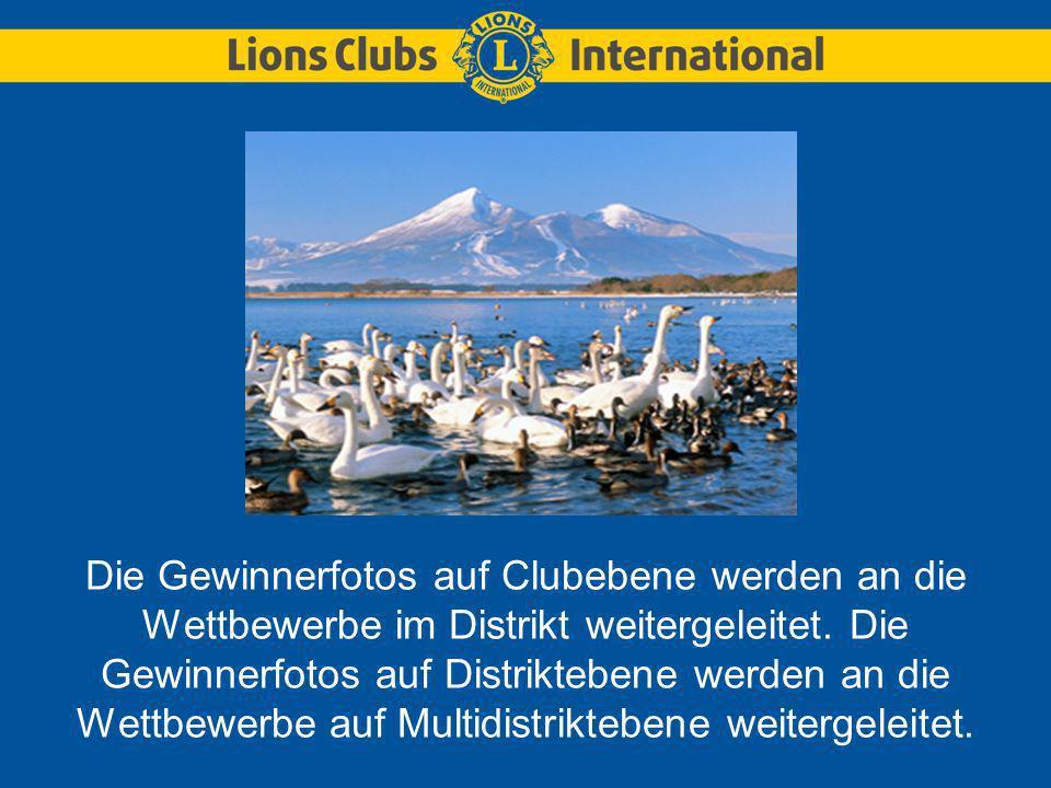 Fotos erscheinen im Kalender des Lions-Umweltfotowettbewerbs in allen offiziellen Sprachen von LCI.