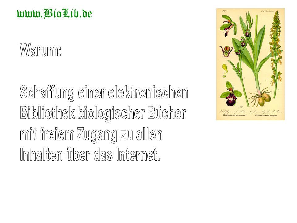 authorErnst Weiss titleDie Sigillarien der preussischen Steinkohlengebiete.