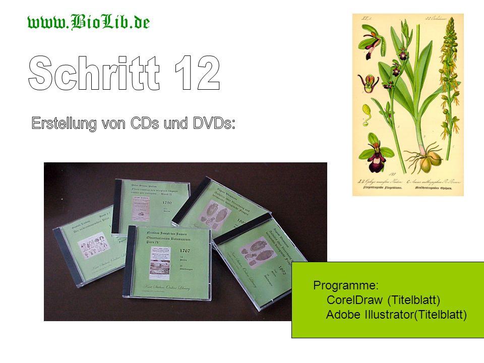 Programme: CorelDraw (Titelblatt) Adobe Illustrator(Titelblatt)