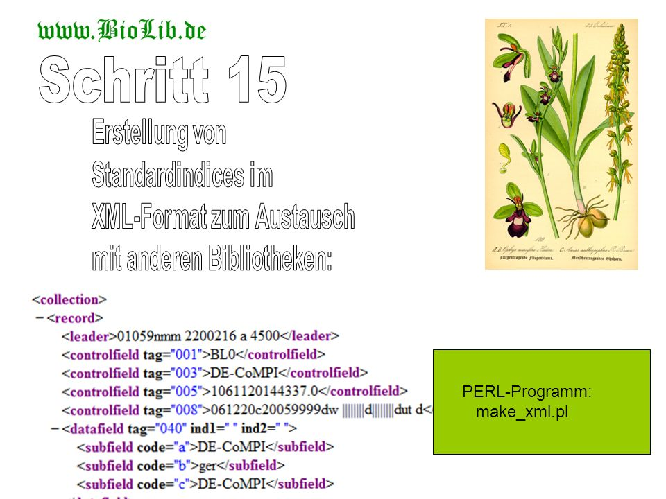 PERL-Programm: make_xml.pl