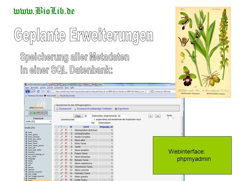 Webinterface: phpmyadmin