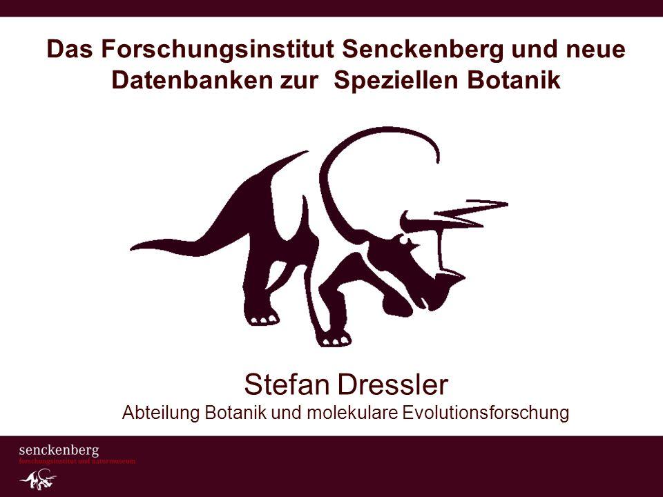 Das Forschungsinstitut Senckenberg und neue Datenbanken zur Speziellen Botanik Stefan Dressler Abteilung Botanik und molekulare Evolutionsforschung