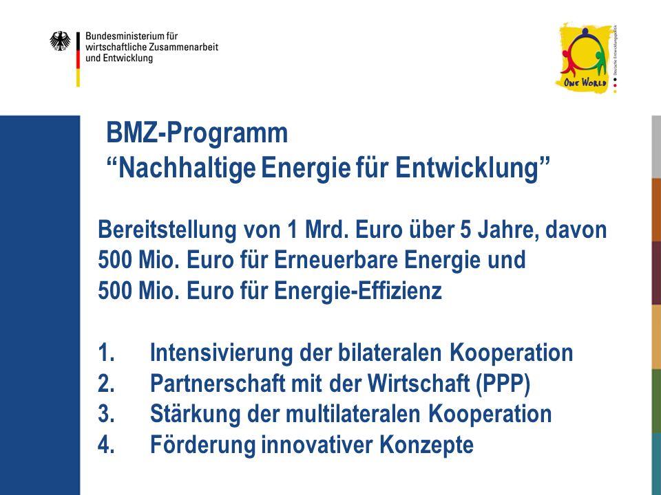 BMZ-Programm Nachhaltige Energie für Entwicklung Bereitstellung von 1 Mrd. Euro über 5 Jahre, davon 500 Mio. Euro für Erneuerbare Energie und 500 Mio.