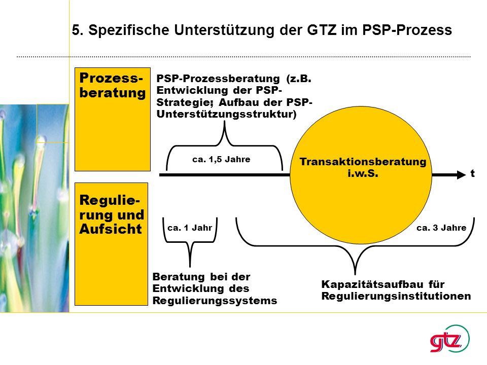 5. Spezifische Unterstützung der GTZ im PSP-Prozess Beratung bei der Entwicklung des Regulierungssystems Kapazitätsaufbau für Regulierungsinstitutione