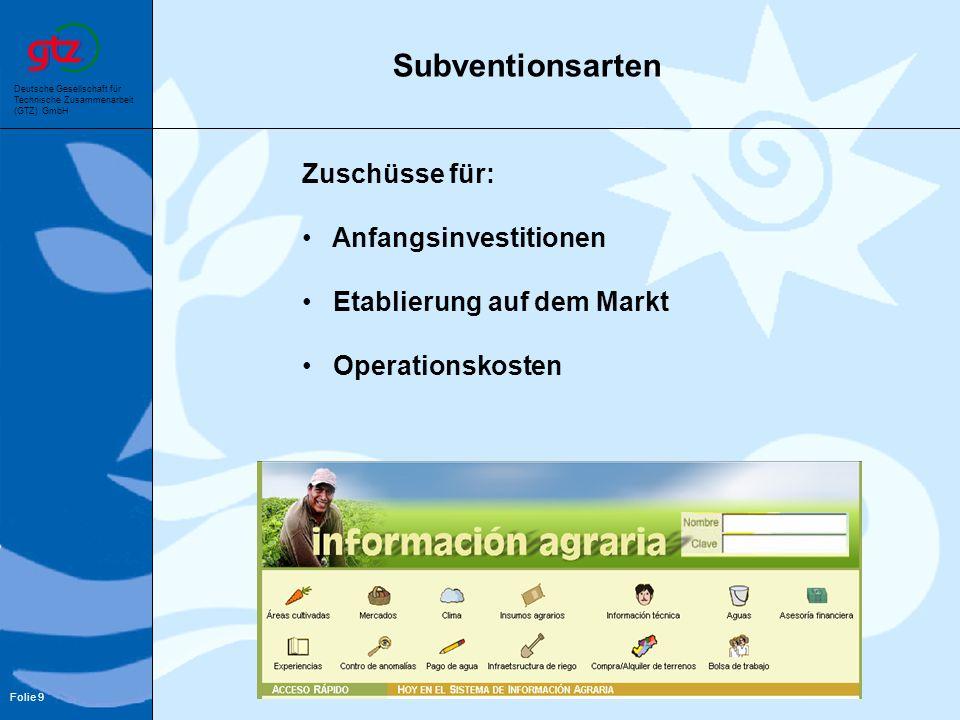 Deutsche Gesellschaft für Technische Zusammenarbeit (GTZ) GmbH Folie 9 Zuschüsse für: Anfangsinvestitionen Etablierung auf dem Markt Operationskosten