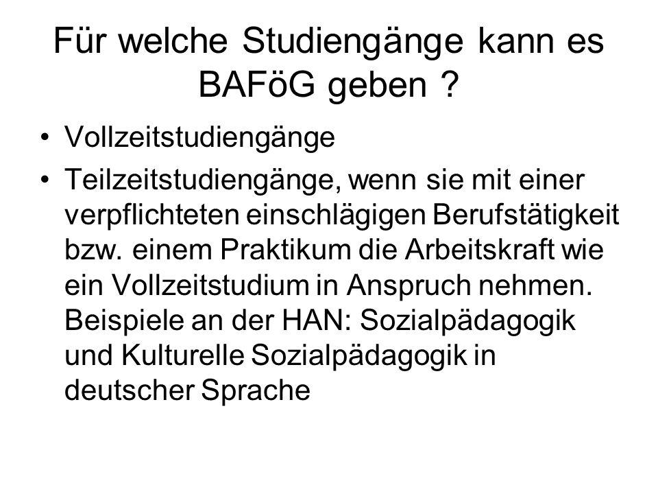 Wo beantrage ich BAFöG für ein Studium in den Niederlanden .