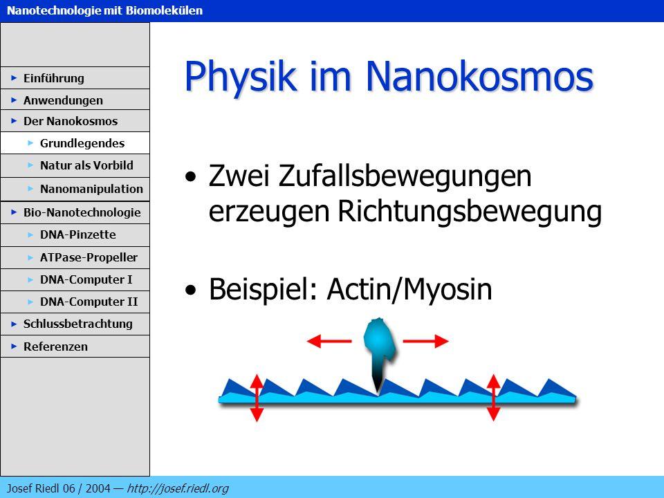 Nanotechnologie mit Biomolekülen Josef Riedl 06 / 2004 http://josef.riedl.org Physik im Nanokosmos Zwei Zufallsbewegungen erzeugen Richtungsbewegung B