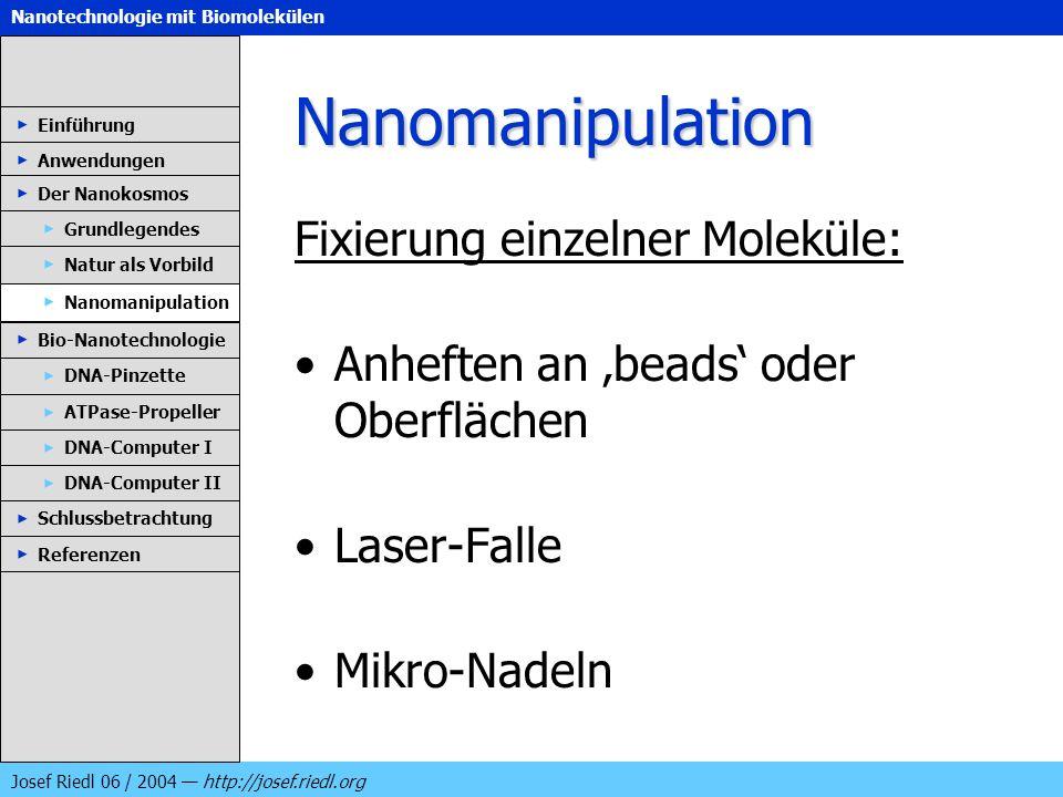 Nanotechnologie mit Biomolekülen Josef Riedl 06 / 2004 http://josef.riedl.org Nanomanipulation Fixierung einzelner Moleküle: Anheften an beads oder Ob