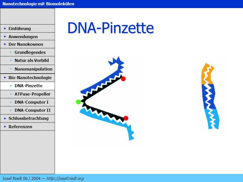 Nanotechnologie mit Biomolekülen Josef Riedl 06 / 2004 http://josef.riedl.org DNA-Pinzette Einführung Anwendungen Der Nanokosmos DNA-Pinzette ATPase-P