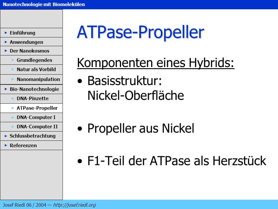 Nanotechnologie mit Biomolekülen Josef Riedl 06 / 2004 http://josef.riedl.org ATPase-Propeller Komponenten eines Hybrids: Basisstruktur: Nickel-Oberfl