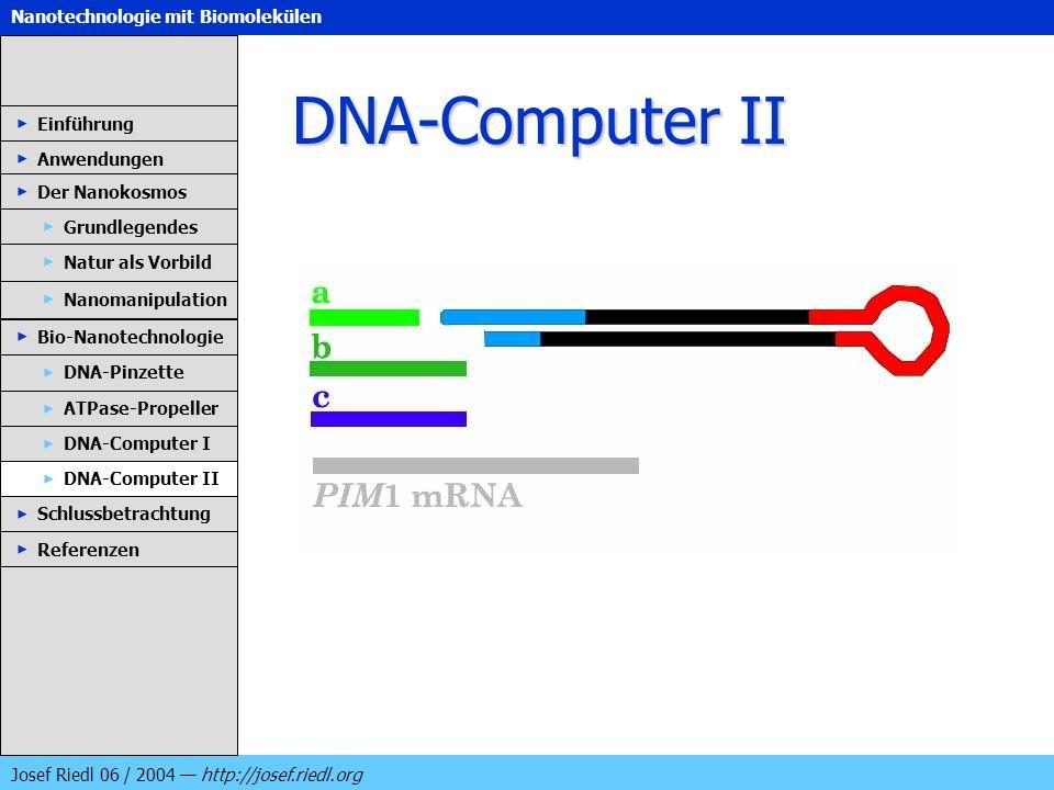 Nanotechnologie mit Biomolekülen Josef Riedl 06 / 2004 http://josef.riedl.org DNA-Computer II Einführung Anwendungen Der Nanokosmos DNA-Pinzette ATPas