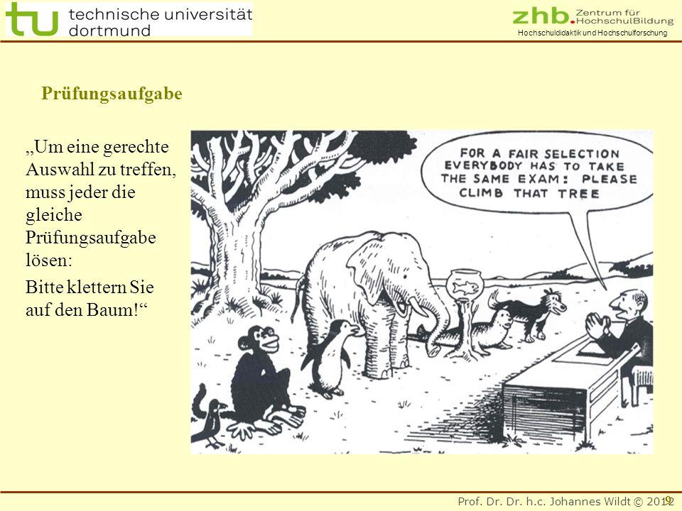 Prof. Dr. Dr. h.c. Johannes Wildt © 2012 Hochschuldidaktik und Hochschulforschung Prüfungsaufgabe Um eine gerechte Auswahl zu treffen, muss jeder die