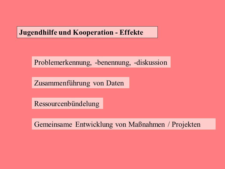 Jugendhilfe und Kooperation - Effekte Problemerkennung, -benennung, -diskussion Zusammenführung von Daten Ressourcenbündelung Gemeinsame Entwicklung v