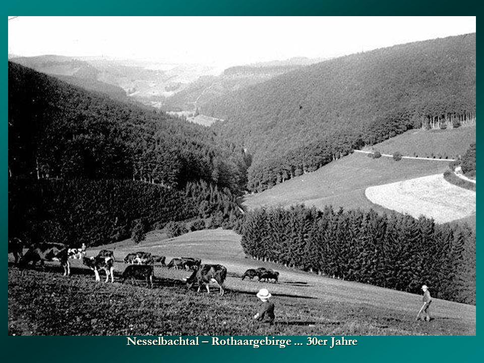 Nesselbachtal – Rothaargebirge... 30er Jahre