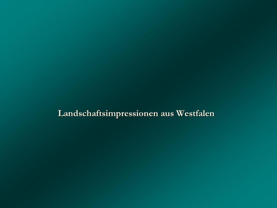 Landschaftsimpressionen aus Westfalen