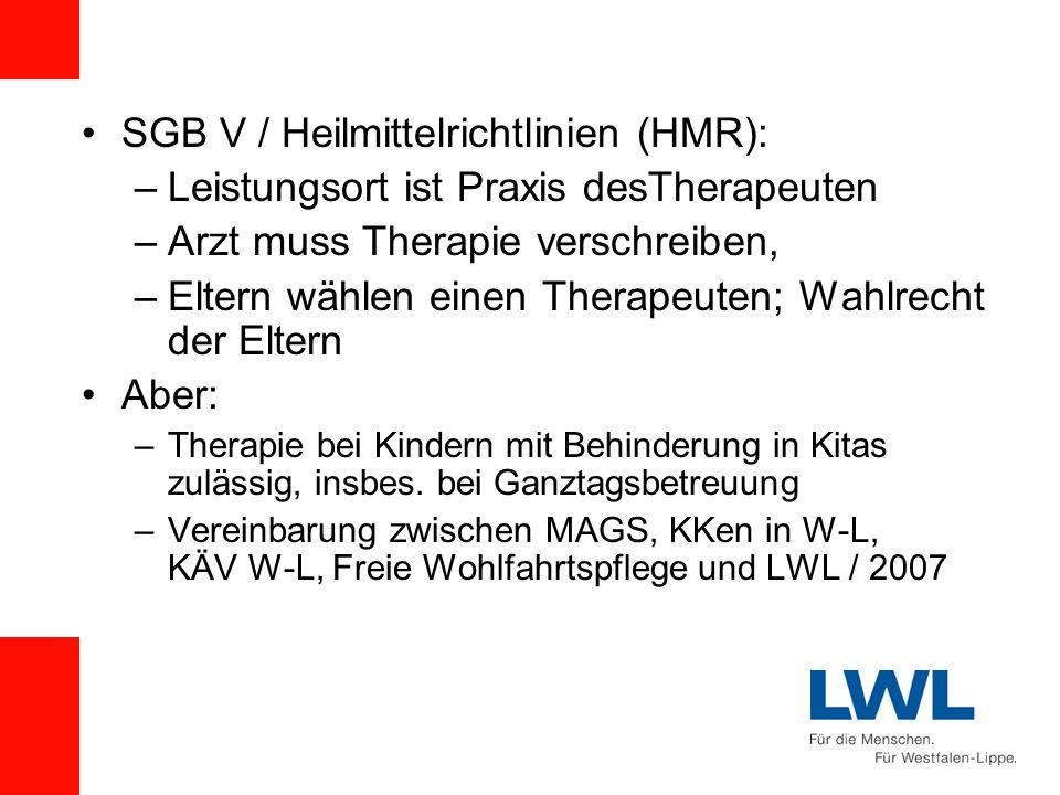 SGB V / Heilmittelrichtlinien (HMR): –Leistungsort ist Praxis desTherapeuten –Arzt muss Therapie verschreiben, –Eltern wählen einen Therapeuten; Wahlr