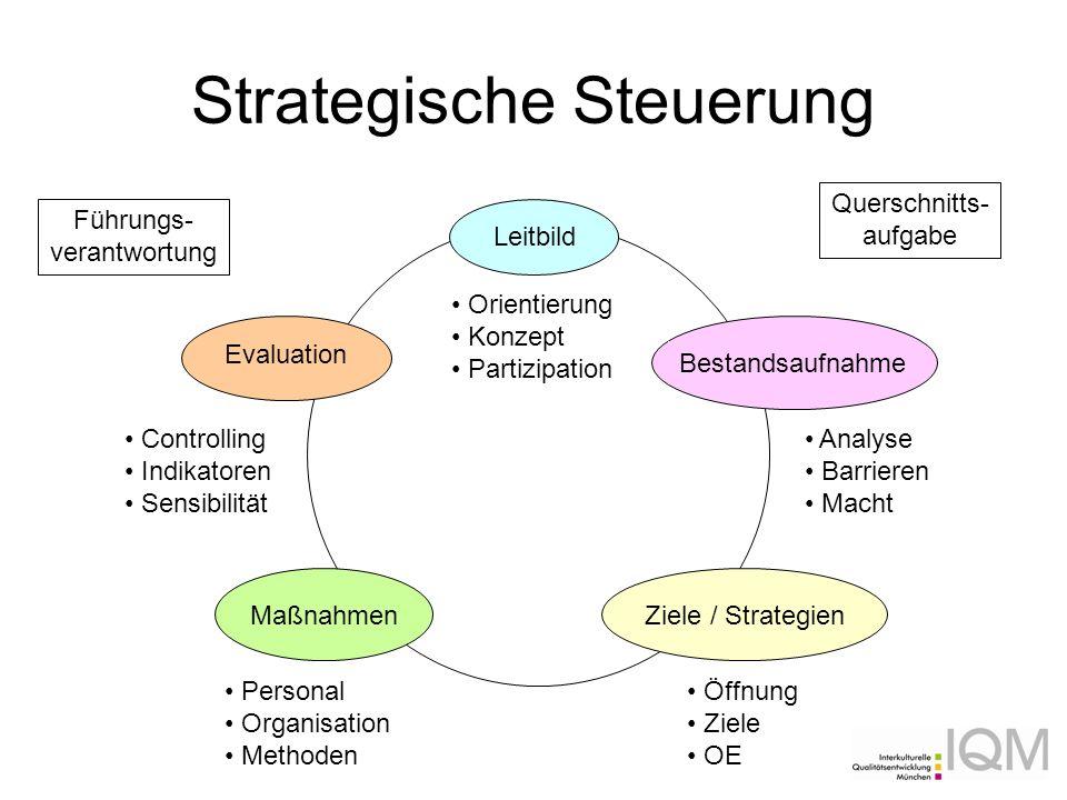 Strategische Steuerung Leitbild BestandsaufnahmeZiele / StrategienMaßnahmen Evaluation Führungs- verantwortung Querschnitts- aufgabe Analyse Barrieren