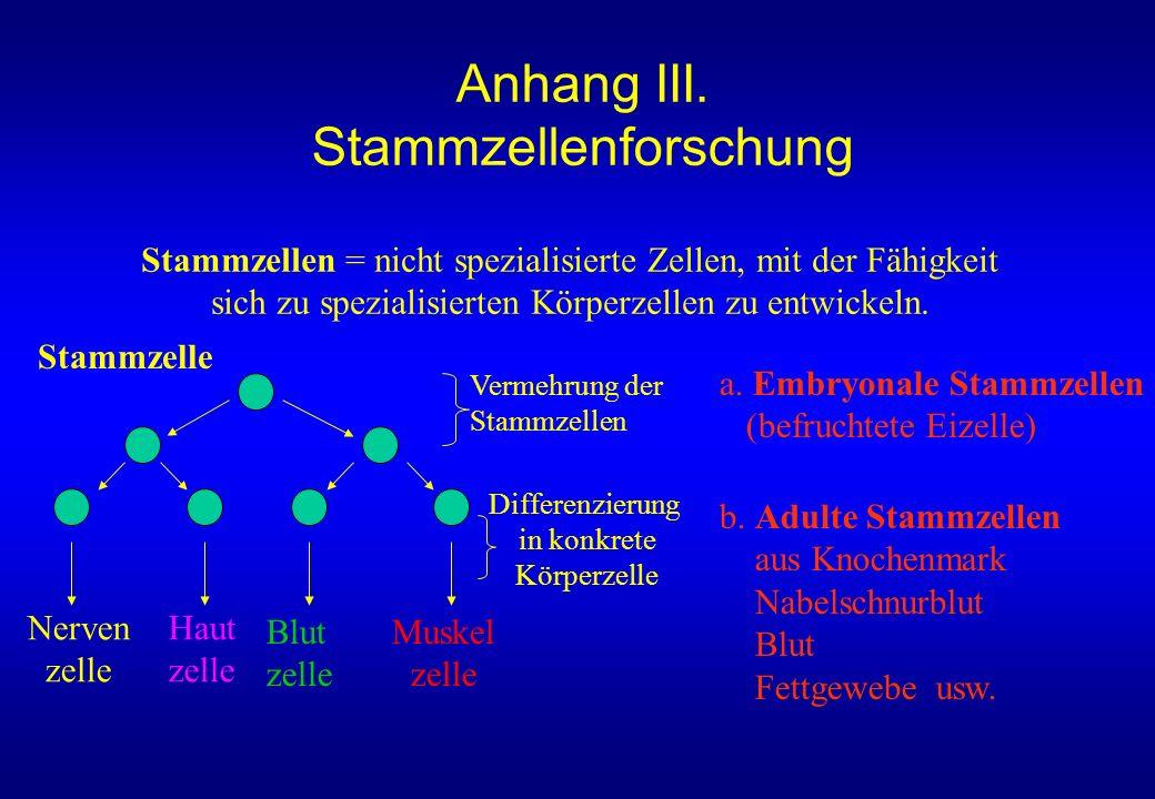 Nerven zelle Haut zelle Blut zelle Muskel zelle Vermehrung der Stammzellen Differenzierung in konkrete Körperzelle Stammzellen = nicht spezialisierte