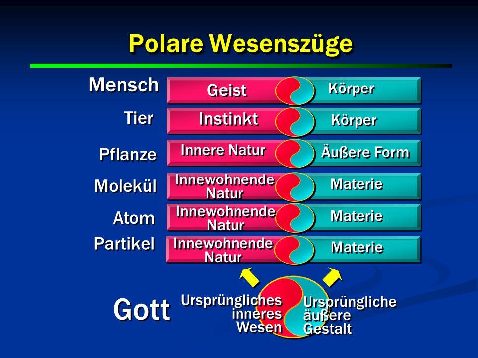 11 Polare Wesenszüge 11 Geist Instinkt Körper Innere Natur Äußere Form Innewohnende Natur Materie Ursprüngliche äußere Gestalt Ursprüngliche äußere Ge
