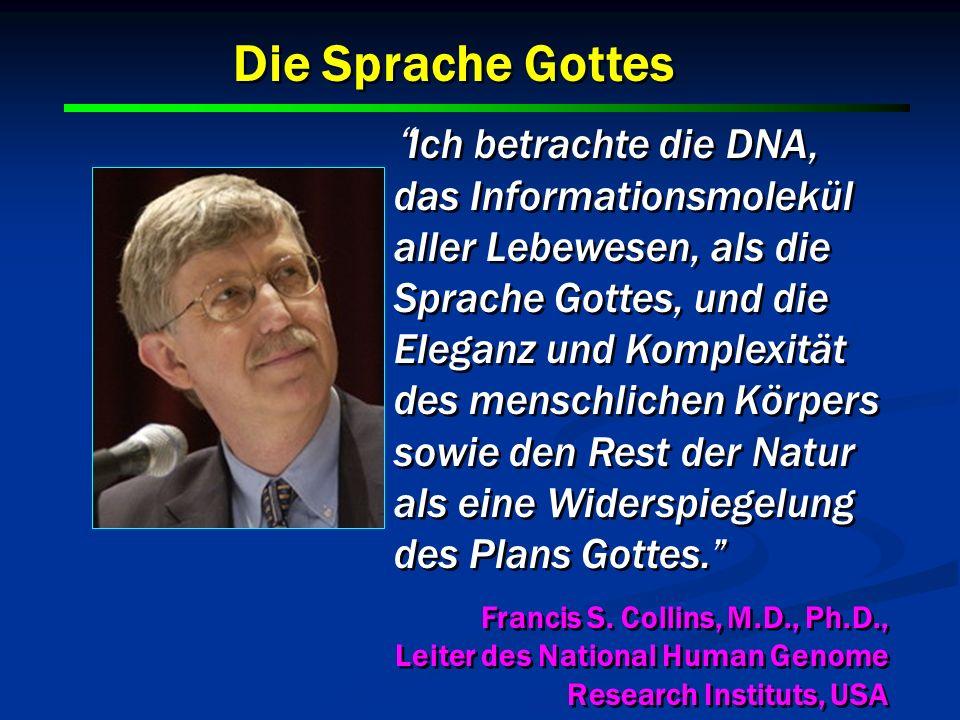 12 Ich betrachte die DNA, das Informationsmolekül aller Lebewesen, als die Sprache Gottes, und die Eleganz und Komplexität des menschlichen Körpers so