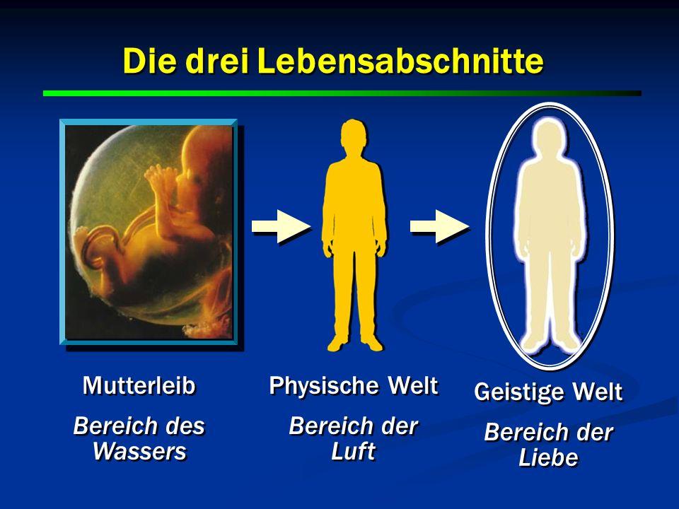 30 Die drei Lebensabschnitte Mutterleib Bereich des Wassers Mutterleib Bereich des Wassers Physische Welt Bereich der Luft Physische Welt Bereich der