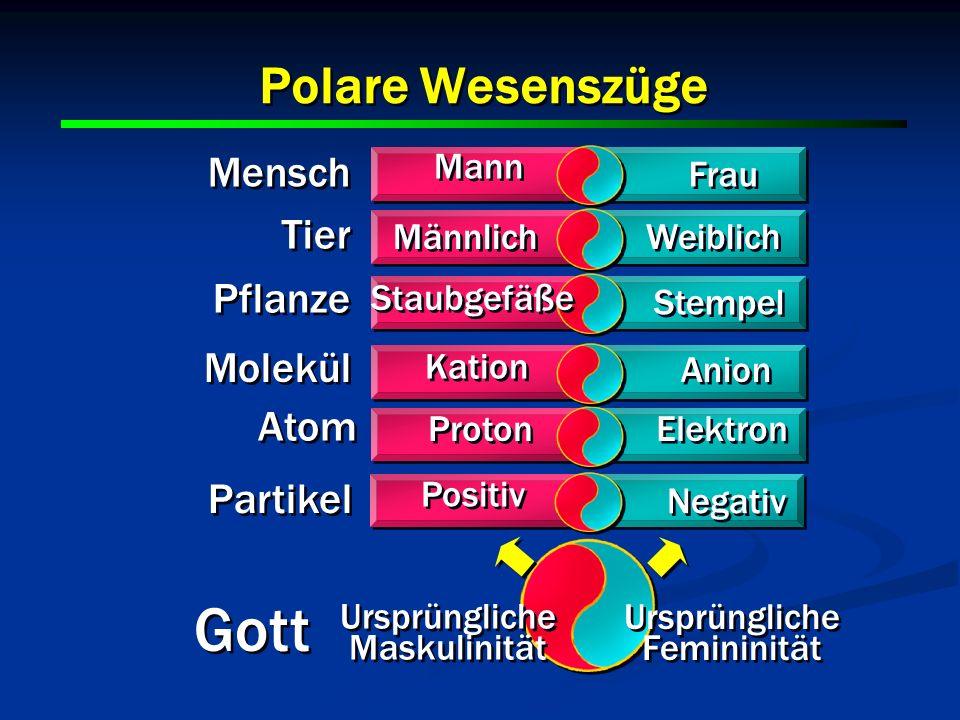 9 9 9 Mann Frau Männlich Weiblich Staubgefäße Stempel Kation Anion Mensch Tier Pflanze Molekül Atom Partikel Proton Elektron Positiv Negativ Gott Ursp