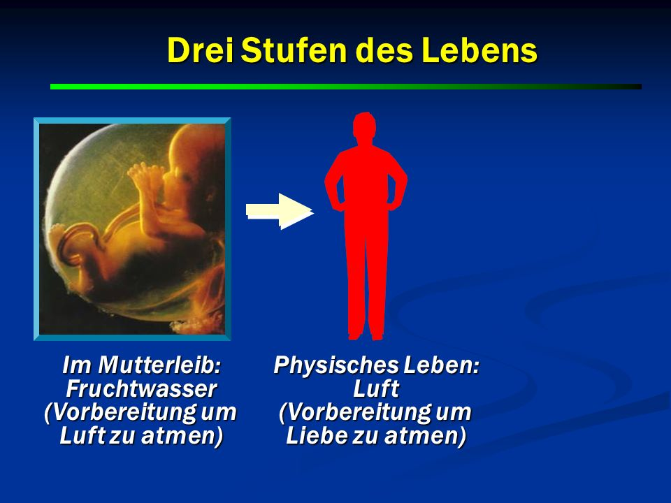 Im Mutterleib: Fruchtwasser (Vorbereitung um Luft zu atmen) Physisches Leben: Luft (Vorbereitung um Liebe zu atmen) Drei Stufen des Lebens