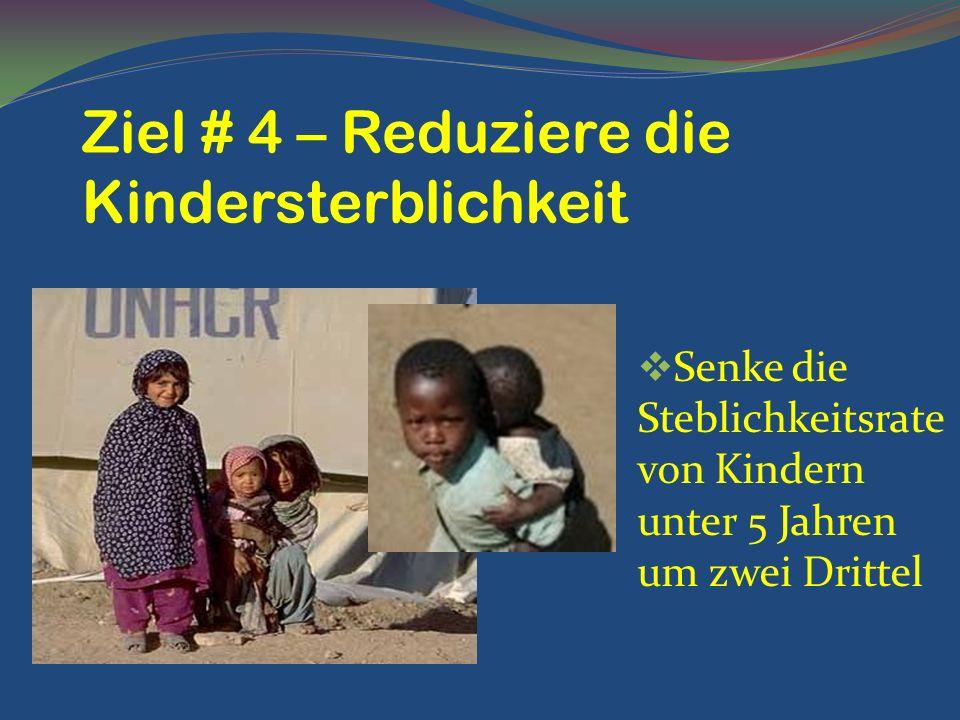 Senke die Steblichkeitsrate von Kindern unter 5 Jahren um zwei Drittel Ziel # 4 – Reduziere die Kindersterblichkeit