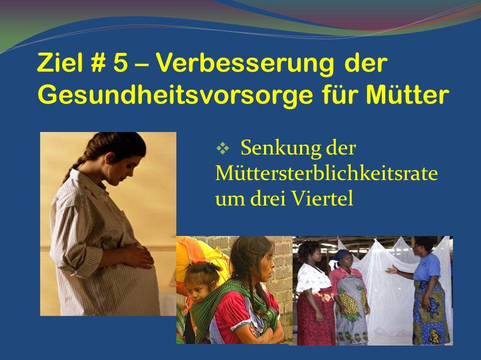 Senkung der Müttersterblichkeitsrate um drei Viertel Ziel # 5 – Verbesserung der Gesundheitsvorsorge für Mütter