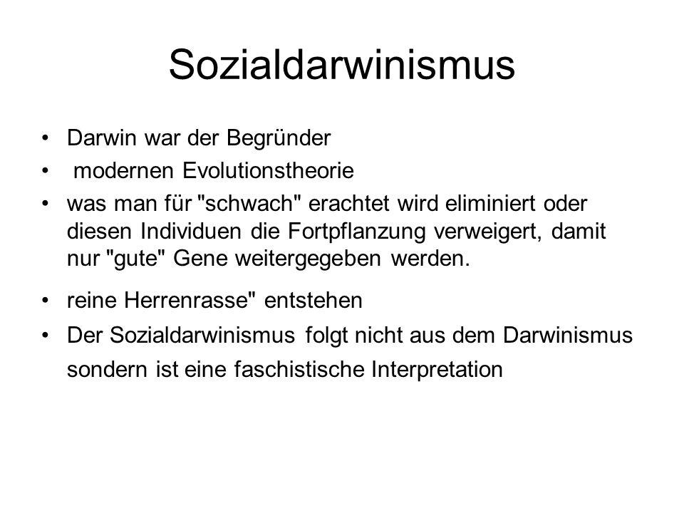 Sozialdarwinismus Darwin war der Begründer modernen Evolutionstheorie was man für