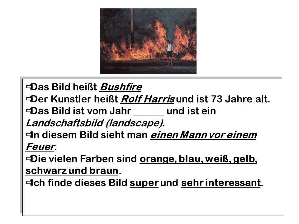 Das Bild heißt Bushfire Der Kunstler heißt Rolf Harris und ist 73 Jahre alt.