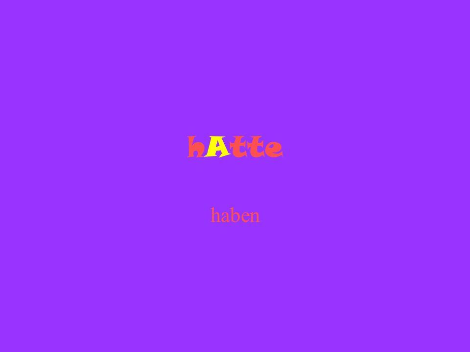 hAtte haben