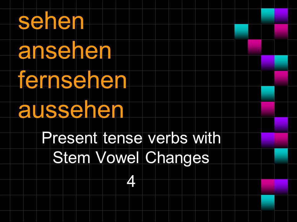 sehen ansehen fernsehen aussehen Present tense verbs with Stem Vowel Changes 4