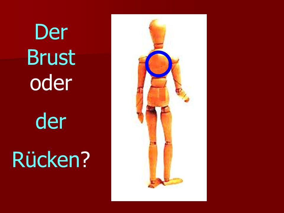 Der Brust oder der Rücken?